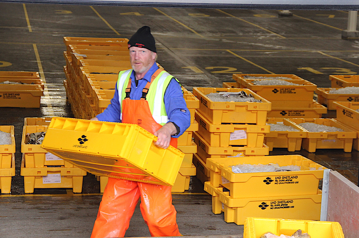 Fish landings at Scalloway continue while new market is